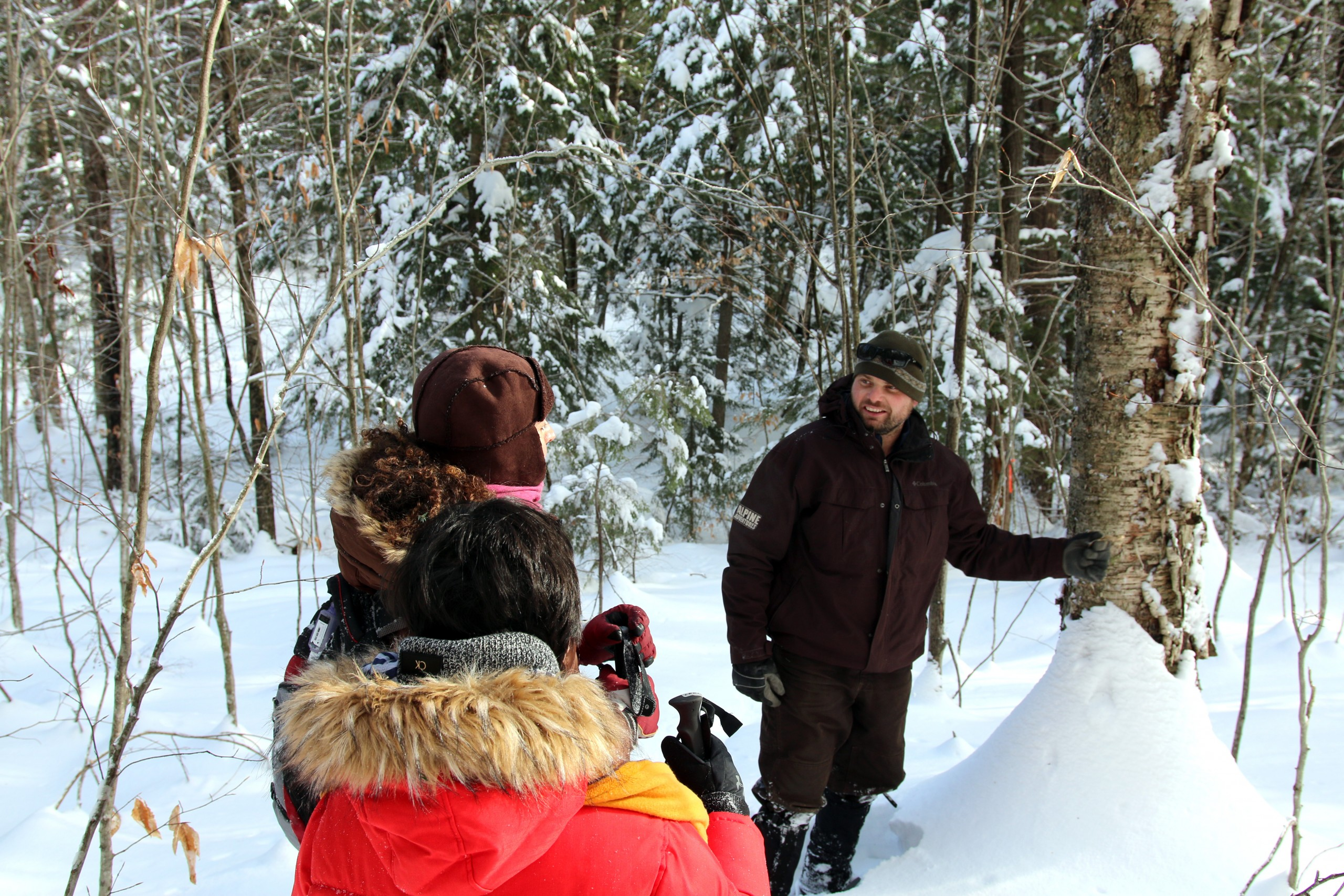 Winter Guided Snowshoe Tour