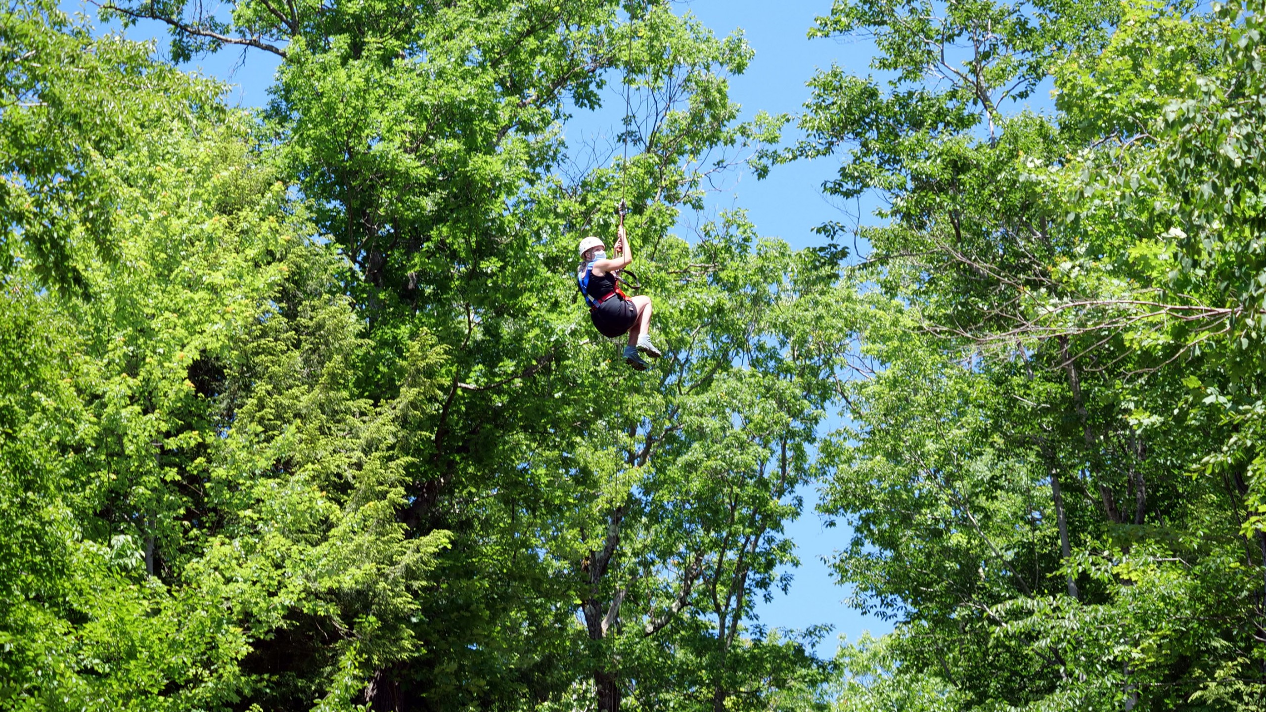 Zipping Through the Canopy
